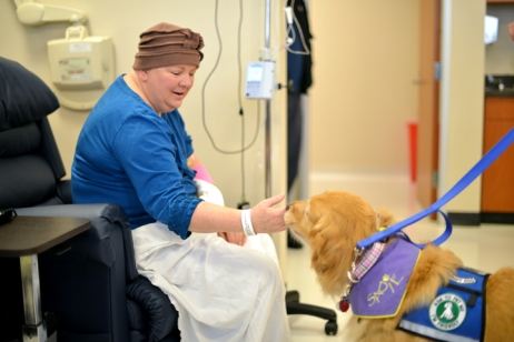 Sadie the therapy dog visits with a patient