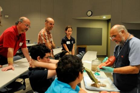 Anatomy lab demonstration