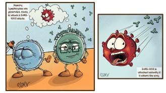 Attacking SARS-COV2